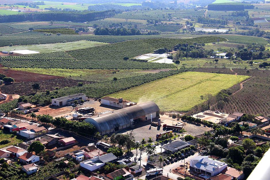 Cafeeiras São Carlos e Benetti Coffee produzem uma média de 150 mil sacas por ano - Divulgação
