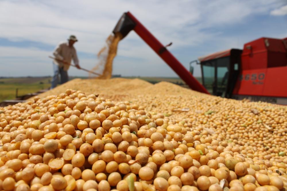 Mercado internacional alavancou os preços da soja - Divulgação
