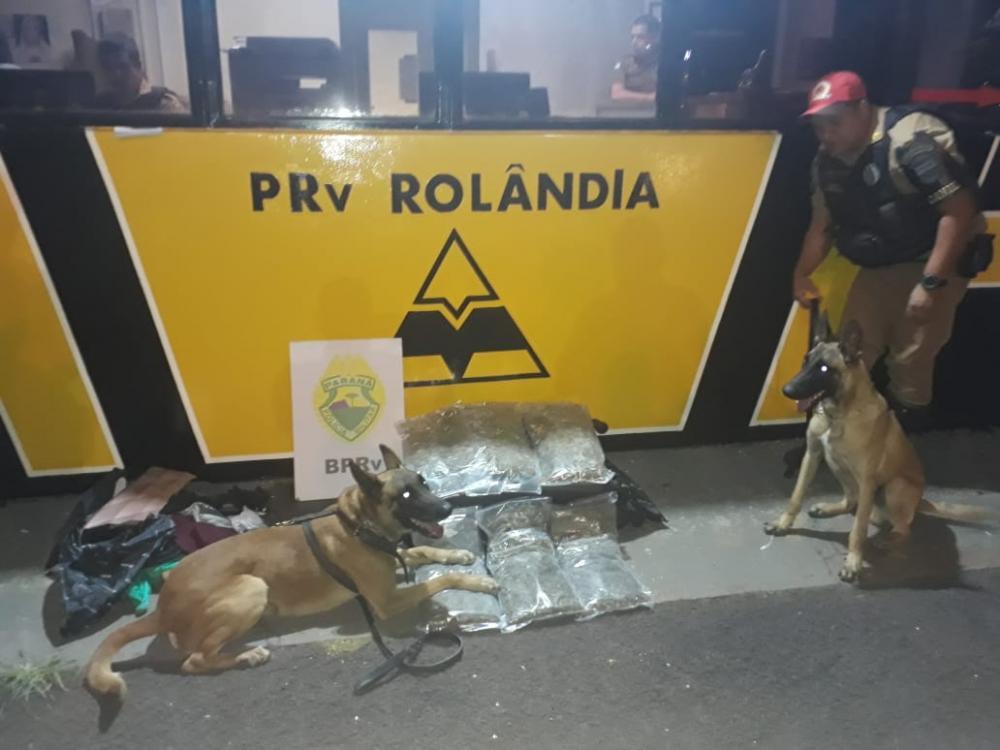 Fiscalização na noite de segunda-feira resultou na apreensão de 20 quilos de maconha - Divulgação PRE