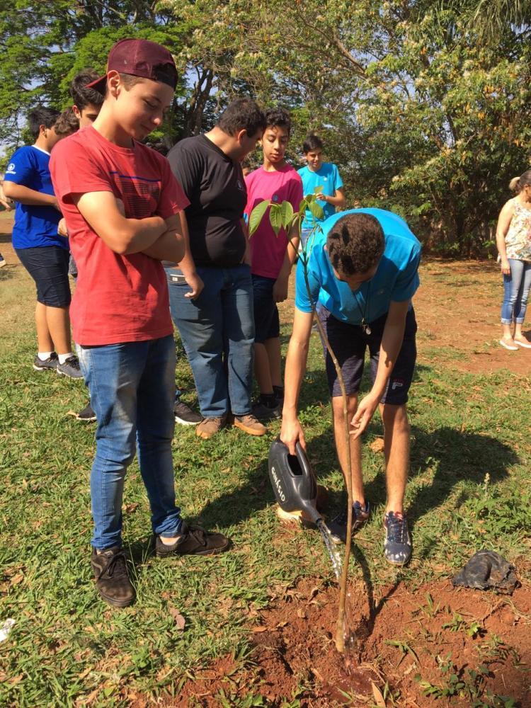 Escolas de Ribeirão Claro recebem palestras sobre arborização urbana