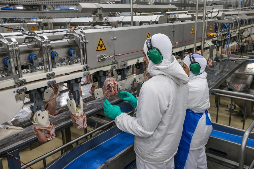 Evolução contrasta com a produção nacional de alimentos industrializados no período, que cresceu 1,6% - AEN