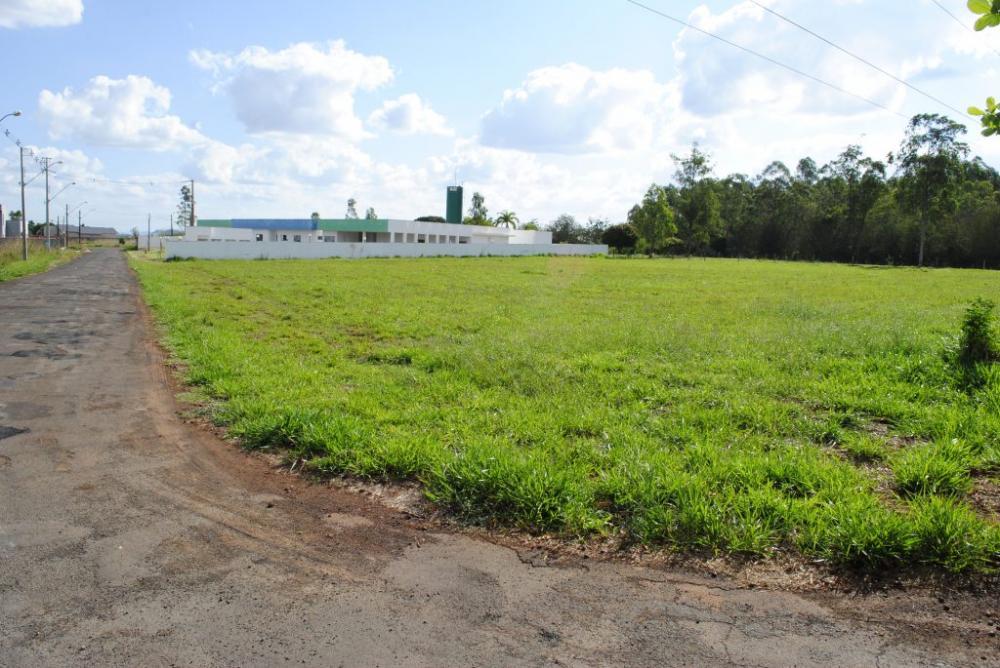 O terreno em questão tem mais de seis mil metros quadrados e fica ao lado da UPA - Foto: Antônio de Picolli - Arquivo