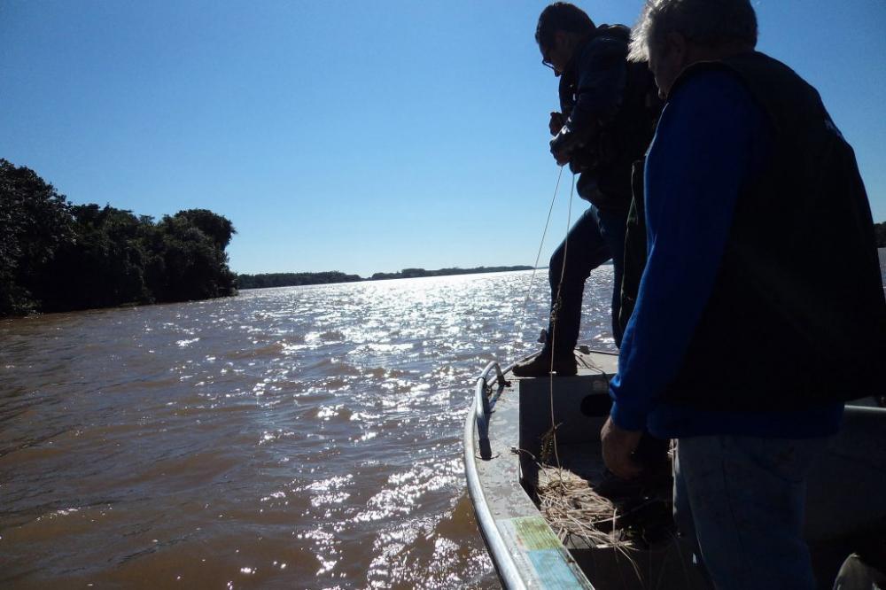 No Paraná está liberada pesca amadora e profissional de espécies nativas como bagre, barbado e curimba - AEN